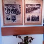 Kraštotyros muziejaus paroda