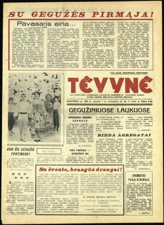 Tėvynė 1963 gegužės 1 NR_51 (154)