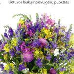 Degutienė, N. Lietuvos laukų ir pievų gėlių puokštės
